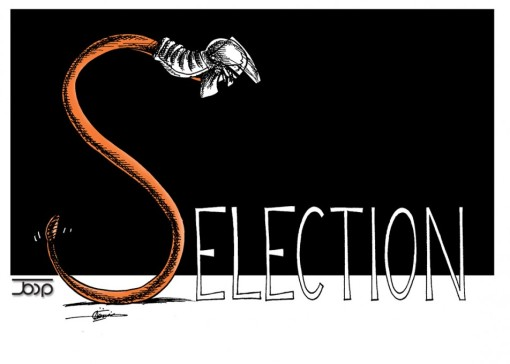 elections in the year of the snake